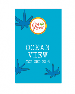 ocean view top cbd