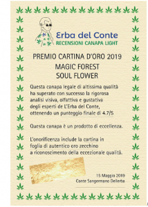 cartina d'oro