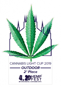 4.20 cannabis light cup