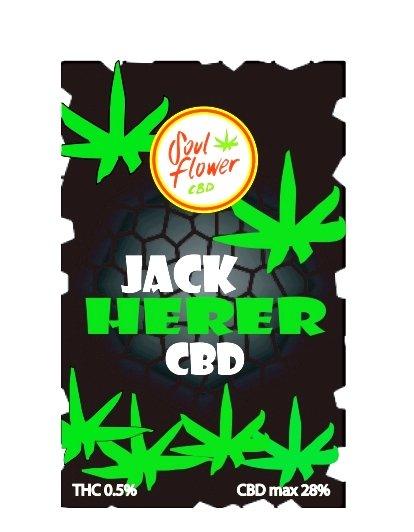 jack-herer-cbd