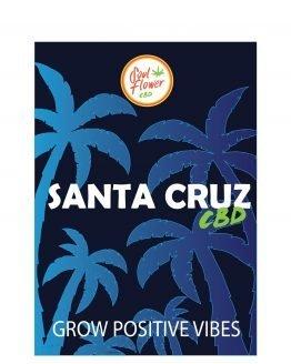 SANTA-CRUZ-CBD-2020